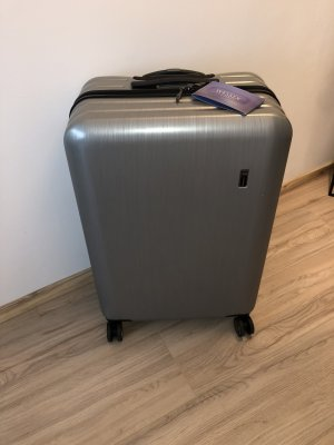Global Suitcase silver-colored