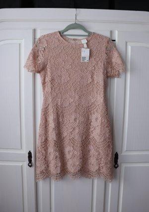 Neues rosa Spitzenkleid von H&M Größe M 38 mit Rückenausschnitt