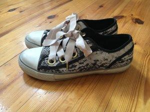 Neuwertige ASH Sneaker in der Größe 39 in Schlangenprint