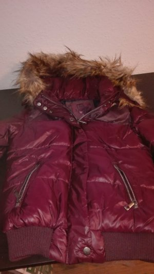 neuwertiger Winterjacke in Bordeaux
