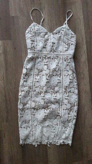 New Look Premium Kleid Spitze Lace Spitzenkleid UK12 38
