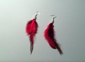 Ohrringe Feder rot schwarz