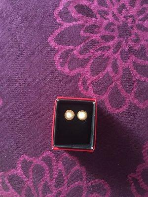 Ohrringe Perlen Pierre Cardin
