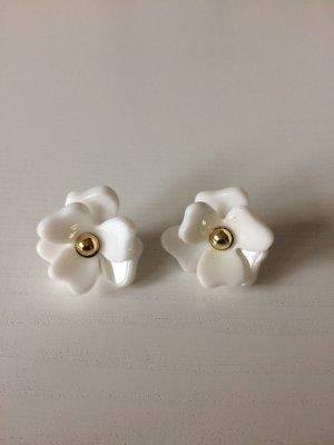 Ohrringe * weiß * in Blütenform * von Zara