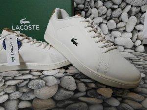 Orginal Lacoste Sneaker, Creme/weiß, Gr.39,5, Neu & Etikett!