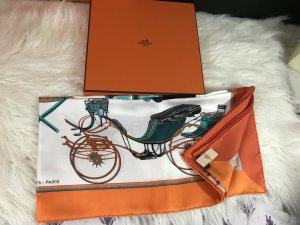 Hermès Silk Scarf multicolored