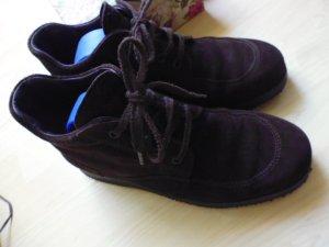 Hogan Chelsea Boots brown-black brown suede