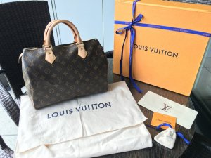 Louis Vuitton Carry Bag brown-beige leather