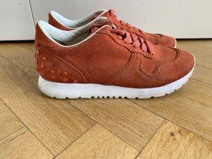 Original Tods Tod's Sneaker Wildleder 36 37 Sneakers Blogger wNeu 440€