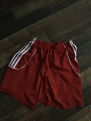 Originale Adidas Shorts