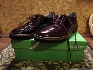 Salamander Chaussure Oxford bordeau