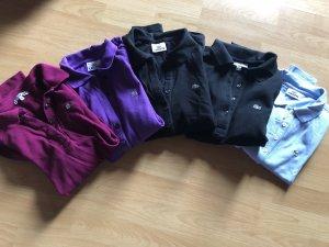 Paket aus 5 Lacoste Polohemden