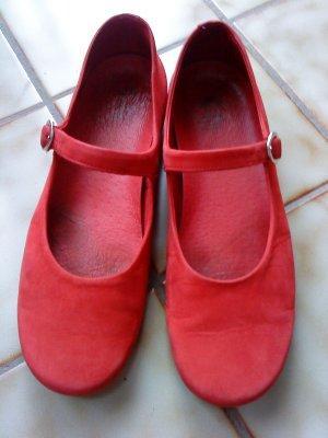 Panama jack Strappy Ballerinas red
