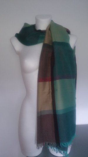 Pashmina multicolored