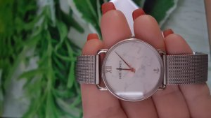 Paul Hewitt Analog Watch silver-colored
