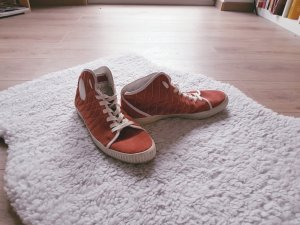 Peter Schmid Sneaker Collection 2010