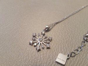 Pierre Cardin Silver Chain silver-colored