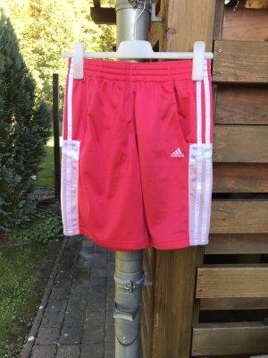 Pinke Adidas Shorts knielang