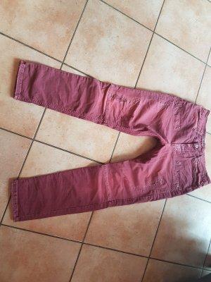 Please Jeans in Weinrot Gr. S