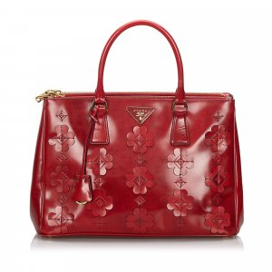 Prada Spazzolato Flowers Galleria Handbag