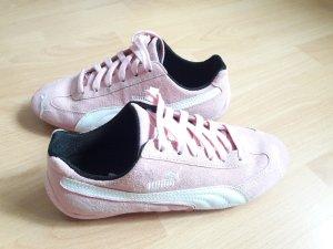Puma Sneakers in 38,5