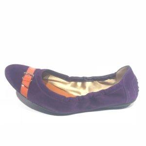 Purple Tod's Flat