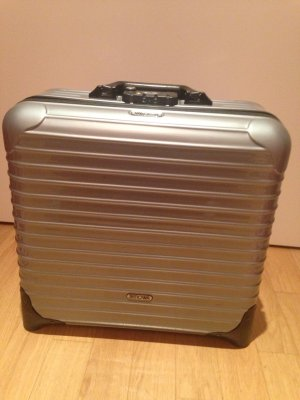Luggage light grey