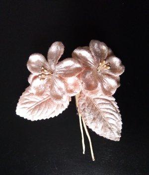 Rosa Ansteckblume