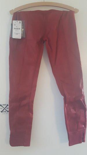 Rote Lederhosen von Zarathustra