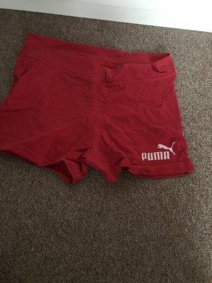 Rote Puma Hose