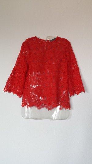 Rotes Spitzenshirt ZARA Gr.xs