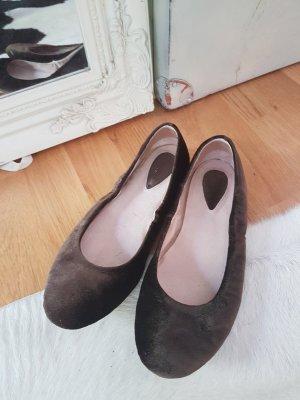 Bloch Ballerinas dark brown