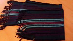 Cecil Fringed Scarf multicolored