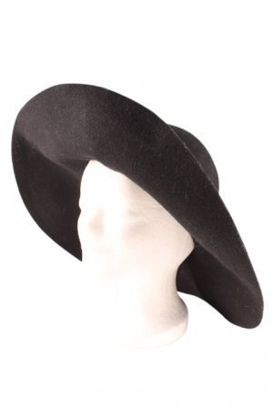 Chapeau à larges bords noir élégant