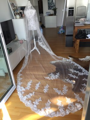 Schleier Braut Hochzeit 3,5m neu