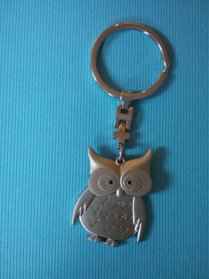 101 Idees Key Chain silver-colored-light grey