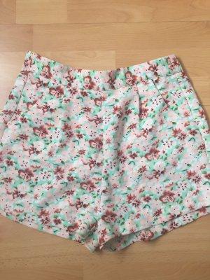 Schöne kurze Hose für den Sommer von Amisu