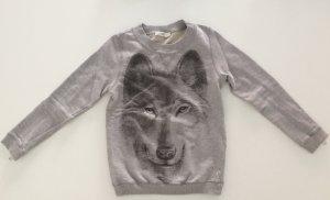 Schönen grauen Sweatshirt von DIESEL.