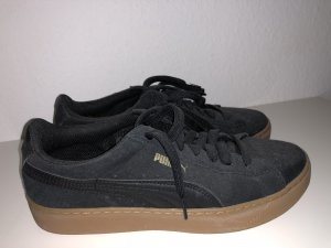 Schwarze Puma