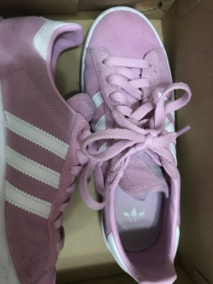 Adidas Originals Basket à lacet rose
