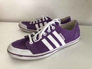 Adidas NEO Basket à lacet violet-blanc tissu mixte