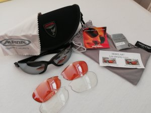 Alpina Sunglasses multicolored