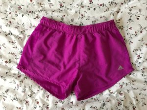 Adidas Sport Shorts violet