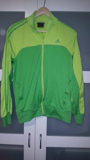 Sportjacke von Adidas