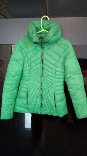Gewatteerd jack groen