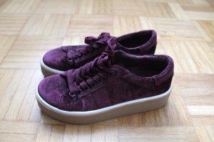 Steve Madden Samt Plateau Sneaker Bordeaux