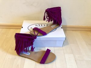 Steve Madden Roman Sandals violet