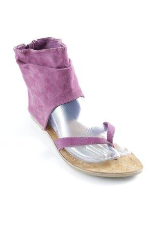Steve Madden Zehentrenner-Sandalen violett-beige extravaganter Stil