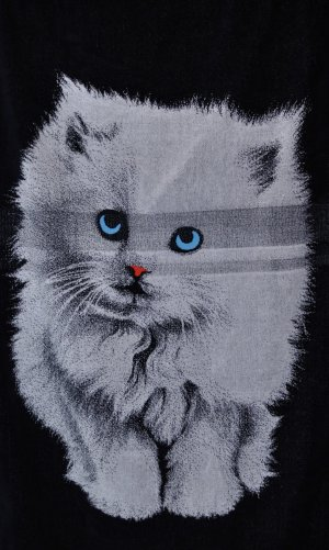 Strandtuch / Badetuch / Handtuch Katze