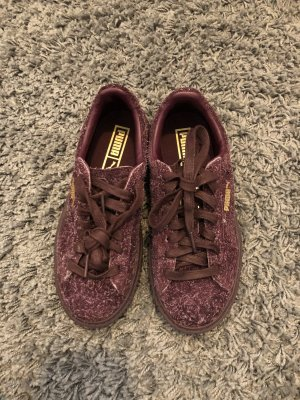 Suede Platform Elemental burgundy/rose gold